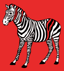 zebra-rectangle2-png8